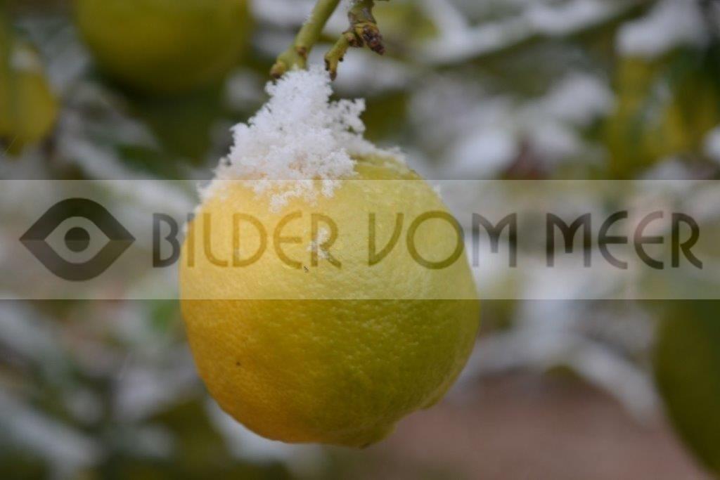 Landschaftsbilder im Winter | Erster Schnee nach 100 Jahren in Orihuela Costa, Spanien
