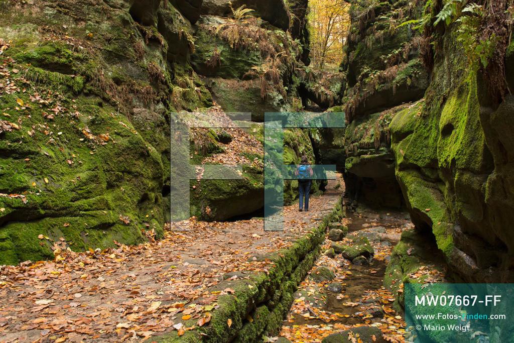 MW07667-FF | Deutschland | Sachsen | Sächsische Schweiz | Das mit Moos bewachsene Uttewalder Tor (Felsentor) im Uttewalder Grund am Malerweg. Der 112 km lange Hauptwanderweg schlängelt sich durch die wildromantische Landschaft des Elbsandsteingebirges, die seit 300 Jahren viele Künstler und Maler inspiriert hat.  ** Feindaten bitte anfragen bei Mario Weigt Photography, info@asia-stories.com **