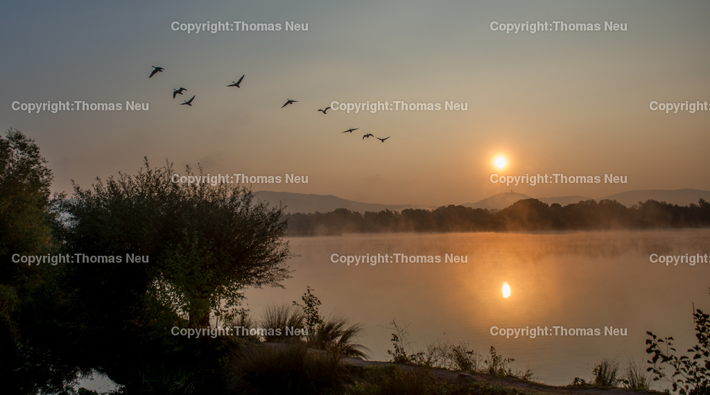 Sonnenaufgang-2 | Bensheim,Fruiehaufsteher werden belohnt...hier der Sonnenaufgang uerber der Bergstrasse von den Ufern der Erlache am Naturschutzzentrum fotografiert. ,, Bild: Thomas Neu