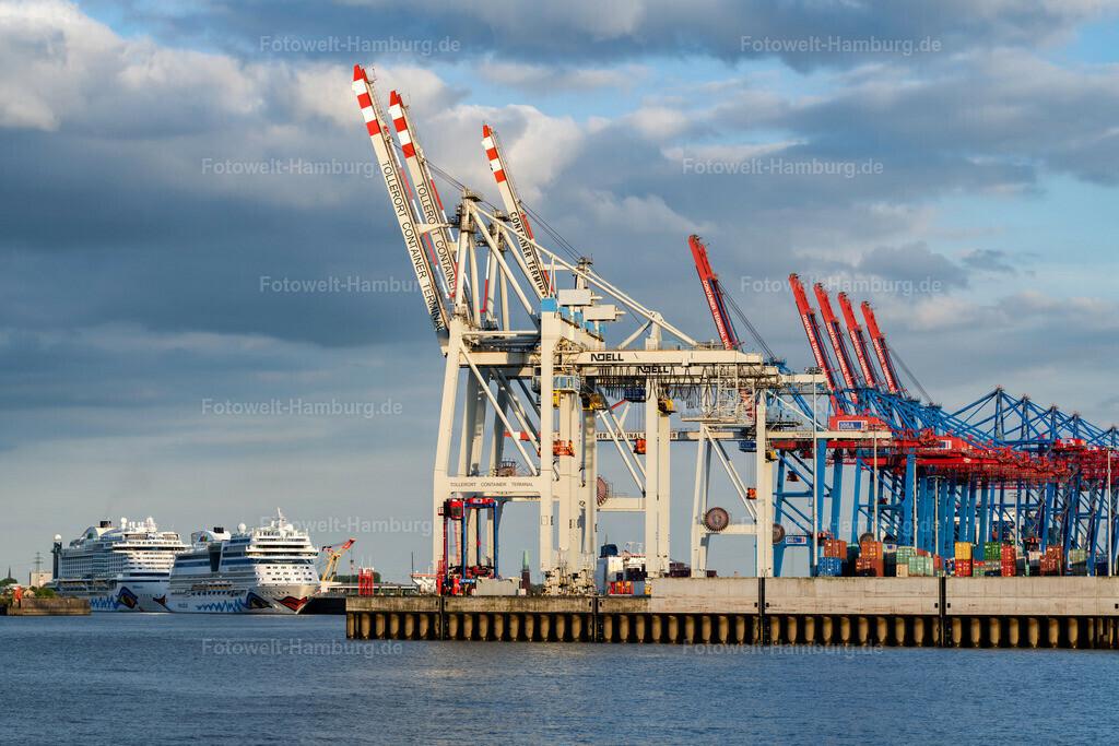 10200520 - Containerterminal Tollerort | Blick auf das Terminal Tollerort und die Kreuzfahrtschiffe AIDAblu und AIDAperla am Terminal Steinwerder.