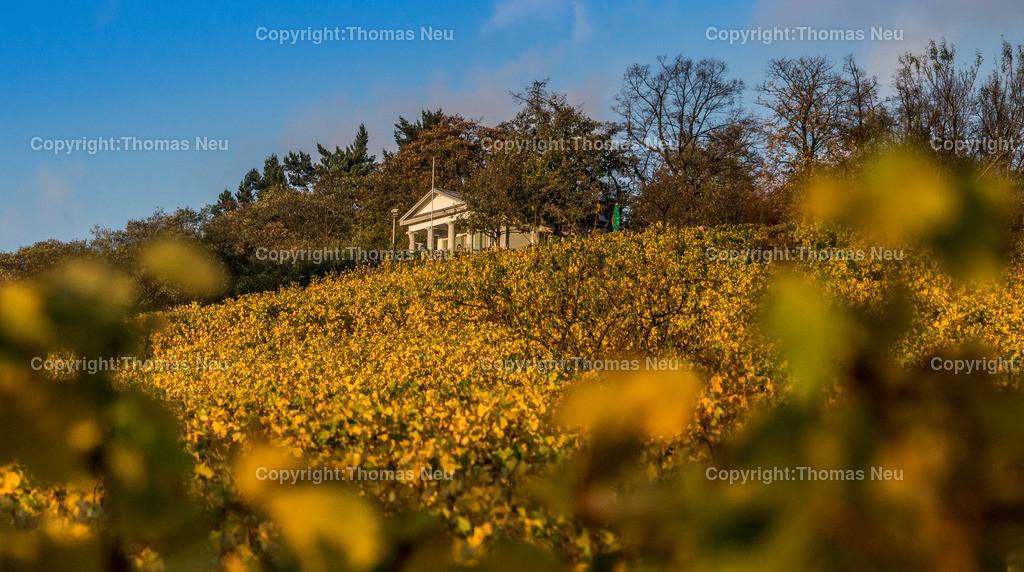 10_Oktober_kirchberg   Bensheim,Kirchberghaeuschen, Schmuckbild, Bensheims Hausberg traegt gelb, Bild: Thomas Neu