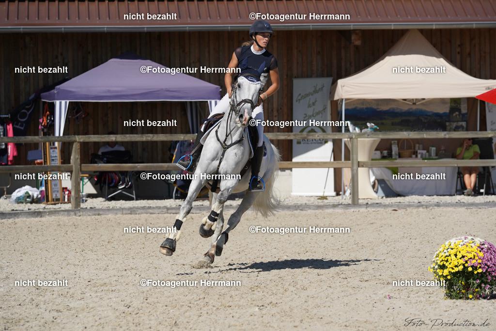 20190915-F_P09704   Horse Gym´s Landino, Honsolgen, 2019