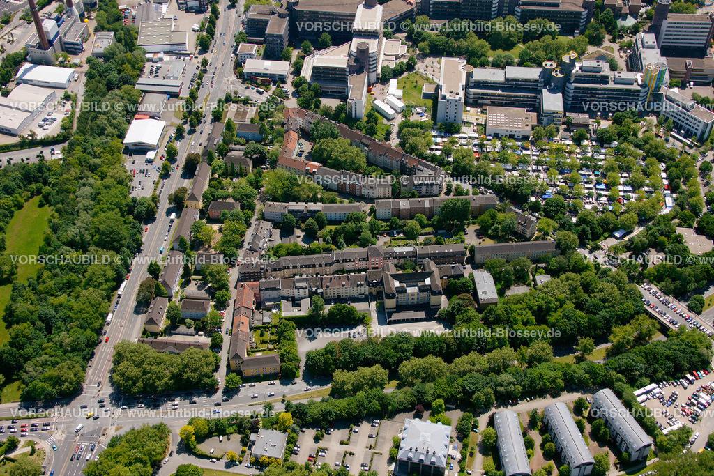 ES10058439 |  Essen, Ruhrgebiet, Nordrhein-Westfalen, Germany, Europa, Foto: hans@blossey.eu, 29.05.2010