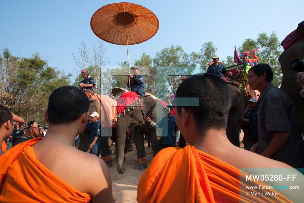 MW05280-FF | Laos | Provinz Sayaboury | Vieng Keo | Reportage: Pey Wan im Elefantendorf | Die Elefanten werden von den Mönchen gesegnet.  Der achtjährige Pey Wan lebt im Elefantendorf Vieng Keo im Nordwesten von Laos. Im Dorf wohnen ca. 500 Leute mit 17 Arbeitselefanten. Sein Vater Hom Peng hat einen 31 Jahre alten Elefantenbullen namens Boun Van, mit dem er im Holzfällercamp im Dschungel arbeitet. Zum Elefantenfest schmückt Pey Wan den Jumbo und darf mit ihm an der Prozession durchs Dorf teilnehmen. Pey Wan möchte, wie sein Vater, später auch Elefantenführer werden.   ** Feindaten bitte anfragen bei Mario Weigt Photography, info@asia-stories.com **