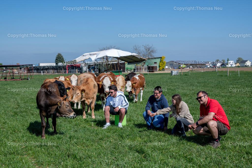 DSC_9947 | Bensheim, Schwanheim, FamilieSchweikert in Schwanheim nach 50 Jahren Viehhaltung jetzt mit ihren Rindern auf die Weiden, ,, Bild: Thomas Neu