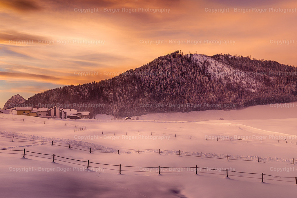 Winter im Riet Teil 2 | Aufgenommen im Riet, Einsiedeln  Dieses Foto ist ein Bestandteil von einem Panorama Foto
