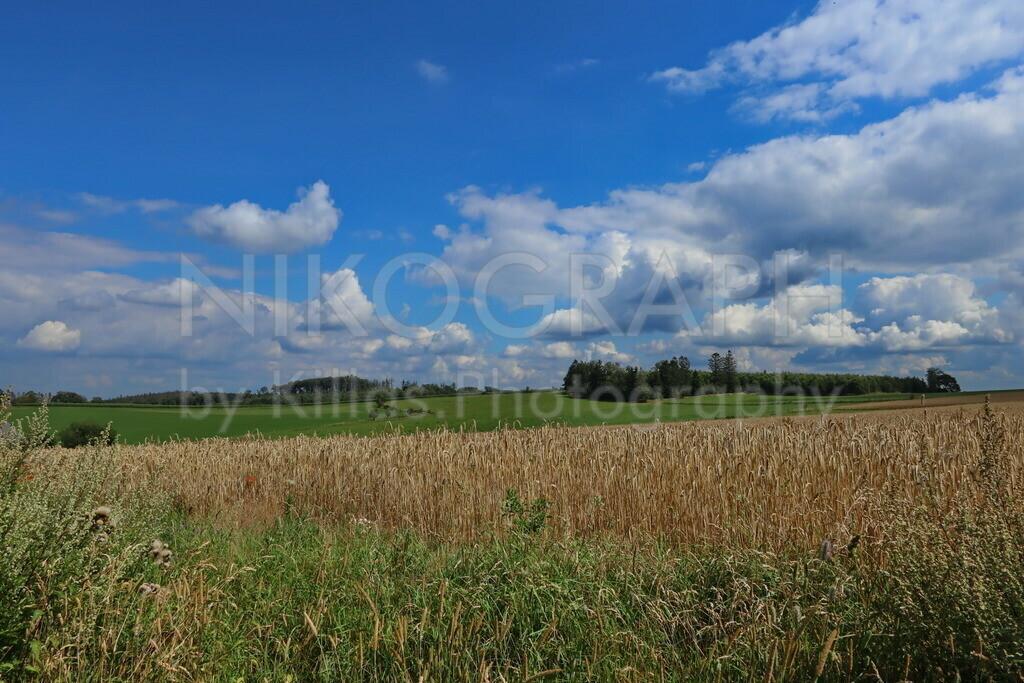 Feld, Wald und Wiesenpanorama von Kesbern | Der Wolkenhimmel mit dem Feld, Wald und Wiesenpanorama von Kesbern.  Kesbern liegt im Süden der Stadt Iserlohn. Der höchste Punkt Iserlohns, der Rüssenberg (494m NN), liegt in Kesbern. Kesbern ist vor allem landwirtschaftlich geprägt, die Felder, Wiesen und Weiden schmiegen sich sanft in die gebirgige Landschafte ein. Kesbern grenzt an Altena und Hemer, bis 1974 gehörte Kesbern den damaligen Amt Hemer an.