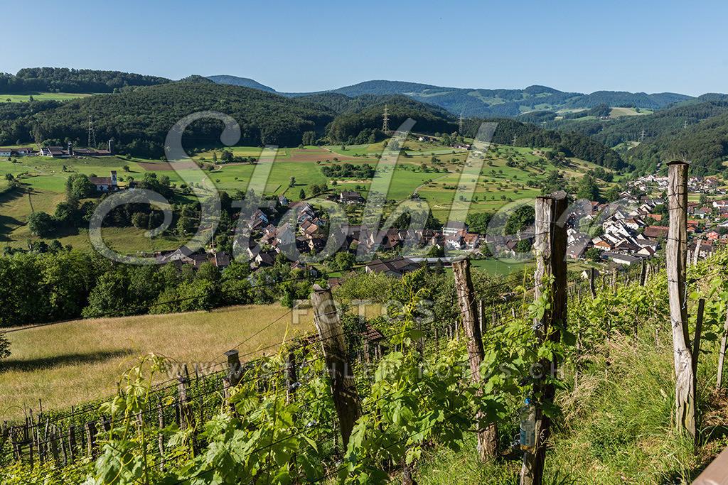 Dorf Ziefen (BL) | Schön eingebettet im Fünflibertal (Reigoldswilertal), Ziefen im Kanton Baselland.