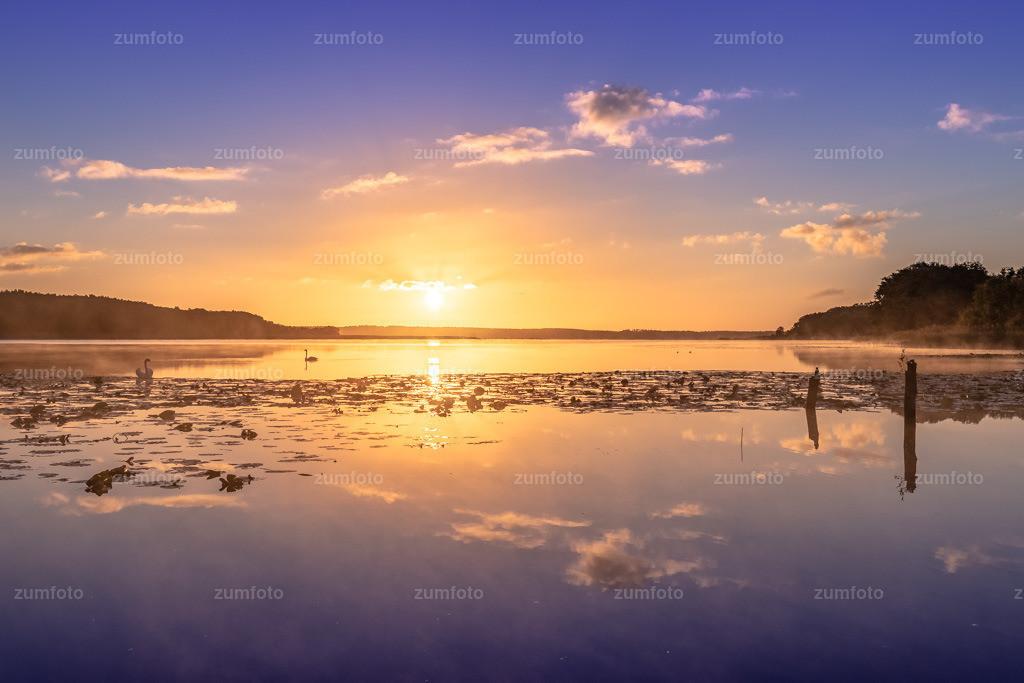180929_0724-0472-HDR   Sonnenaufgang am Kölpinsee beim Wiesengehege.   ⠀⠀⠀⠀⠀⠀⠀⠀⠀ Das Bild entstand im September kurz nach Sonnenaufgang. Das Wiesentgehege ist ca 15 km von Waren (Müritz) entfernt. ⠀⠀⠀⠀⠀⠀⠀⠀⠀ --Dateigröße 5200 x 3400 Pixel--