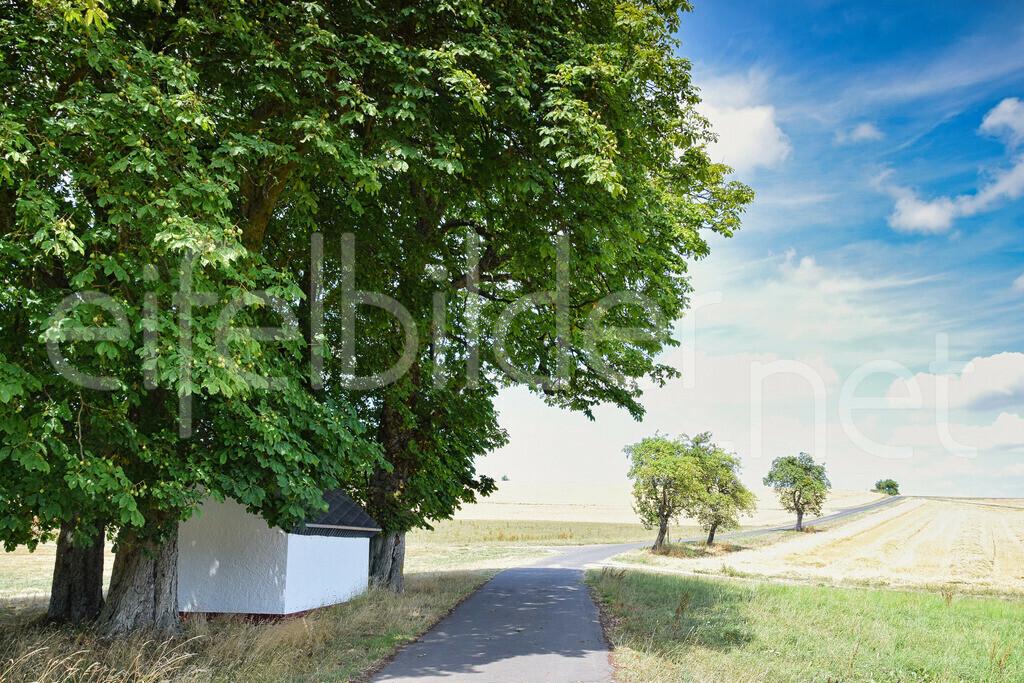 Kapelle am Wegesrand | durch das Spiel mit einer Überbelichtung scheinen die Kornfelder direkt mit dem Horizont zu verschmelzen, was dem Bild eine besondere Tiefe verleiht