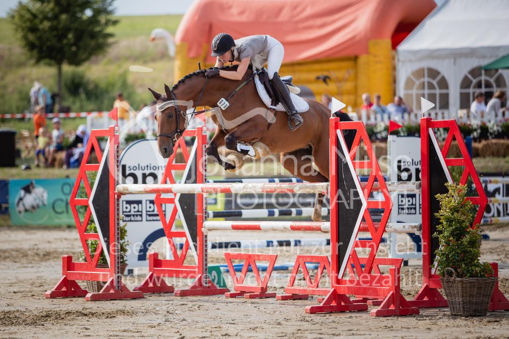 190801_BST_Springpferde-M_5-7J-425 | Braker Sommerturnier 2019 Springpferdeprüfung Kl. M* 5-7jährige Pferde