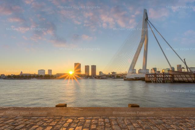 Erasmusbrücke in Rotterdam | Blick über die Nieuwe Maas zu