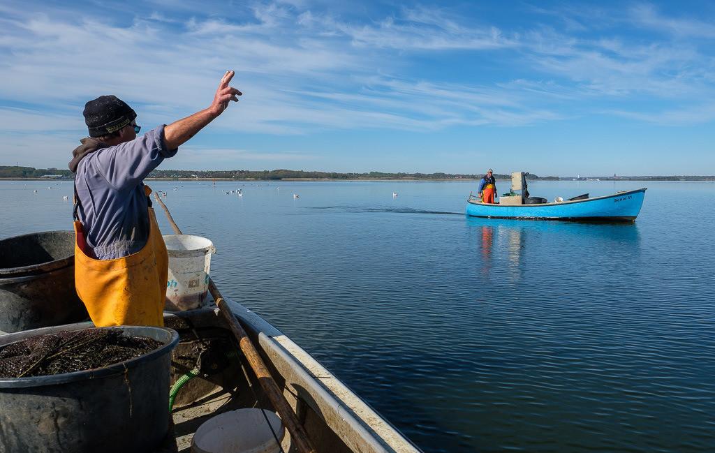 Matthias Nanz – ein Fischer an der Schlei © Holger Rüdel   Matthias Nanz aus Schleswig ist einer der letzten Berufsfischer an der Schlei. Bei dieser Fangfahrt Ende April auf der Großen Breite der Schlei begegnete er seinem Kollegen Jörn Ross, dem Ältermann der Holmer Fischerzunft.
