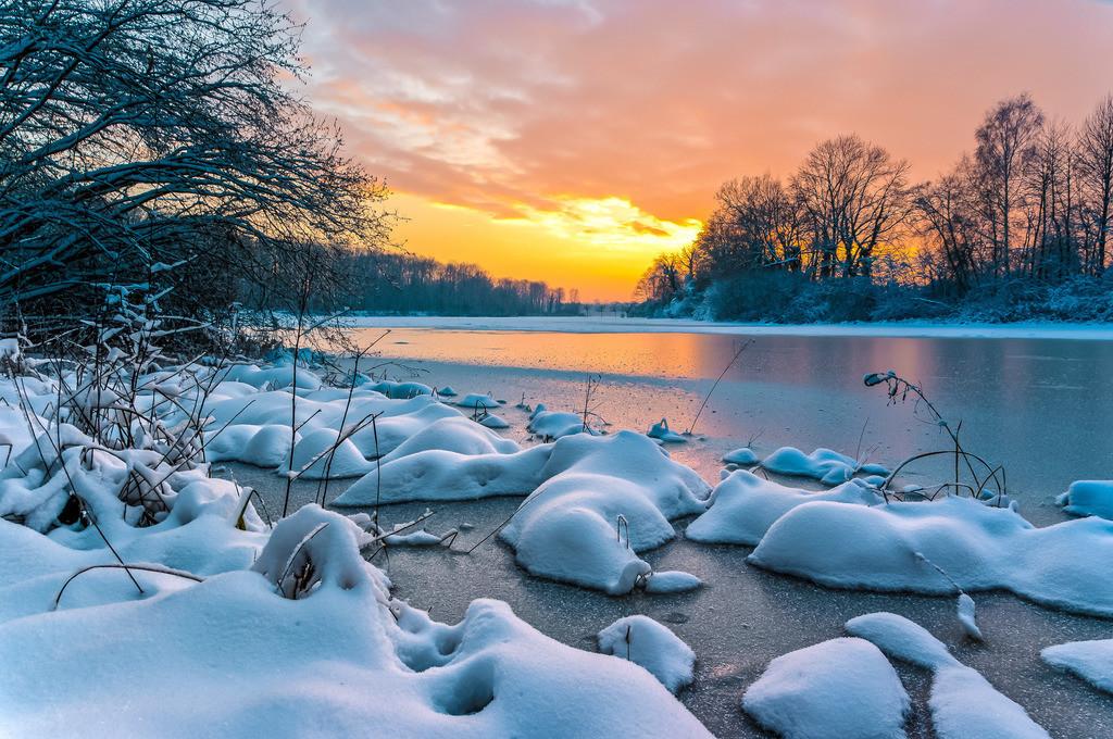 Winterlicher Taubergießen | Abendstimmung im Naturschutzgebiet Taubergießen am Oberrhein