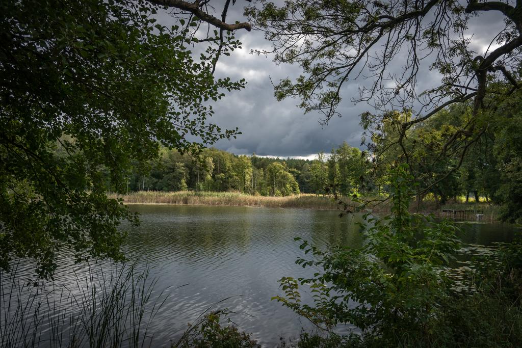 Domjüchsee | nahe Neustrelitz