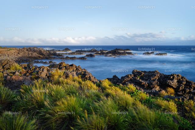 Felsenstrand mit Wasser und Gras bei kräftigem Wind | Einsamer Küstenabschnitt mit großen Steinblöcken bei Abendlicht, starker Wind bewegt Grasbüschel im Vordergrund und das Wasser, Aufnahme mit Langzeitbelichtung, Farbkontraste, Tiefenwirkung - Location: Portugal, Azoren, Insel Corvo