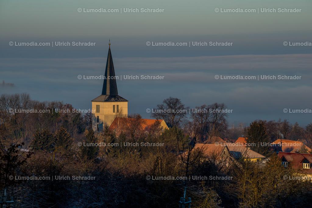 10049-10288 - Wintermorgen _ Eilenstedt | max. Auflösung 7360 x 4912