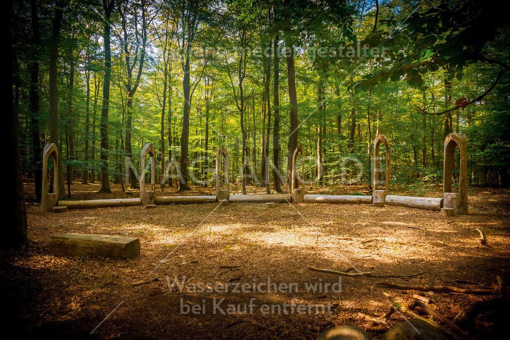 Wildpark-Kaiserslautern_20210918_1334
