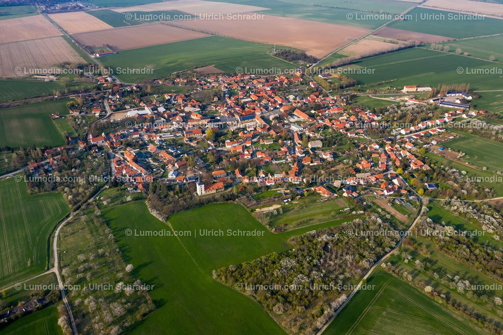 10049-50232 - Eilenstedt am Huy