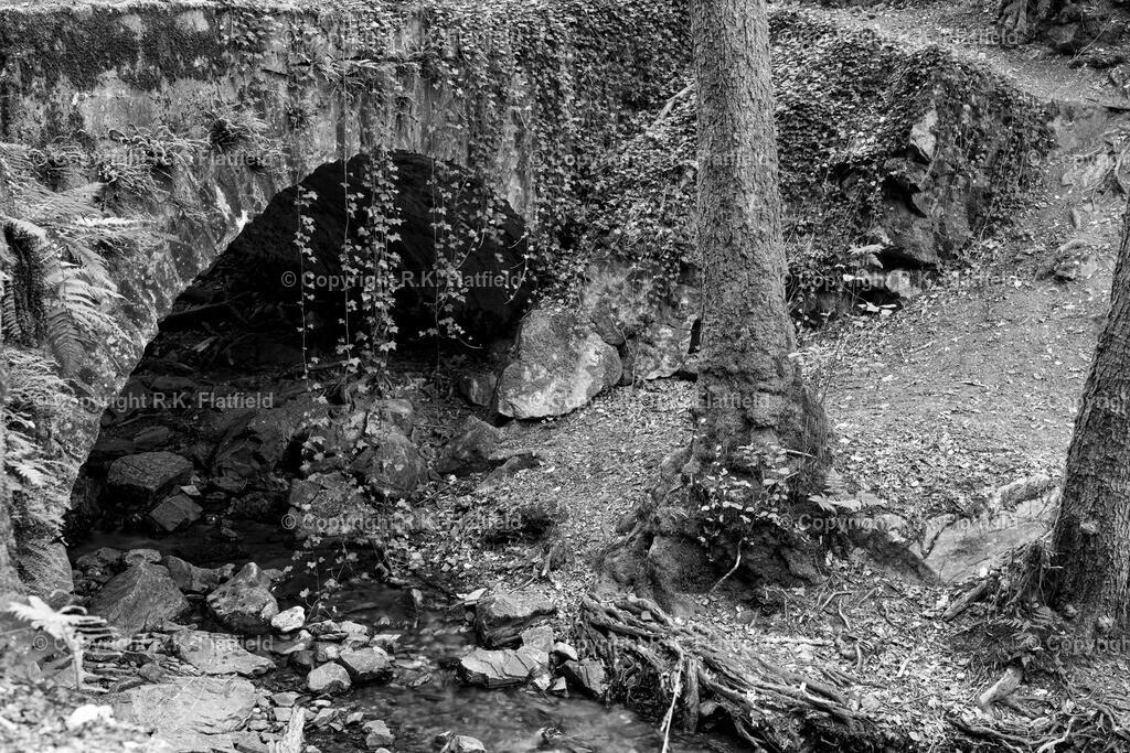 Alte Steinbrücke im Morgenbachtal | Morgenbachtal