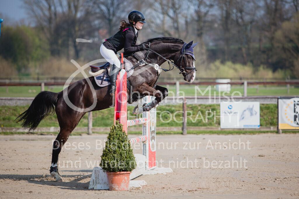 190406_Frühlingsfest_SprA-107   Frühlingsfest der Pferde 2019, von Lützow Herford, A**-Springen, RLP 10 - 32