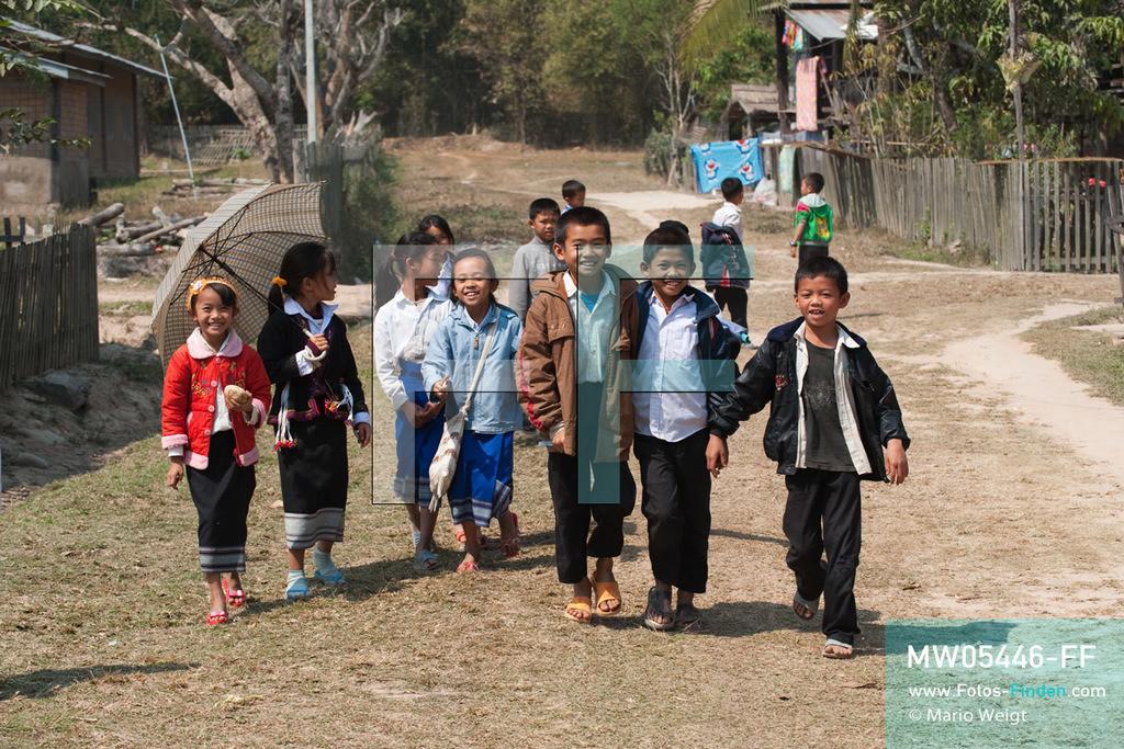 MW05446-FF | Laos | Provinz Sayaboury | Vieng Keo | Reportage: Pey Wan im Elefantendorf | Pey Wan mit seinen Klassenkameraden auf dem Weg zur Schule. Er besucht die 3. Klasse.  Der achtjährige Pey Wan lebt im Elefantendorf Vieng Keo im Nordwesten von Laos. Im Dorf wohnen ca. 500 Leute mit 17 Arbeitselefanten. Sein Vater Hom Peng hat einen 31 Jahre alten Elefantenbullen namens Boun Van, mit dem er im Holzfällercamp im Dschungel arbeitet. Zum Elefantenfest schmückt Pey Wan den Jumbo und darf mit ihm an der Prozession durchs Dorf teilnehmen. Pey Wan möchte, wie sein Vater, später auch Elefantenführer werden.  ** Feindaten bitte anfragen bei Mario Weigt Photography, info@asia-stories.com **