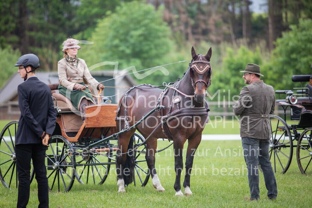 190525_Fahren-020 | Pferdesporttage Herford 2019 Fahren