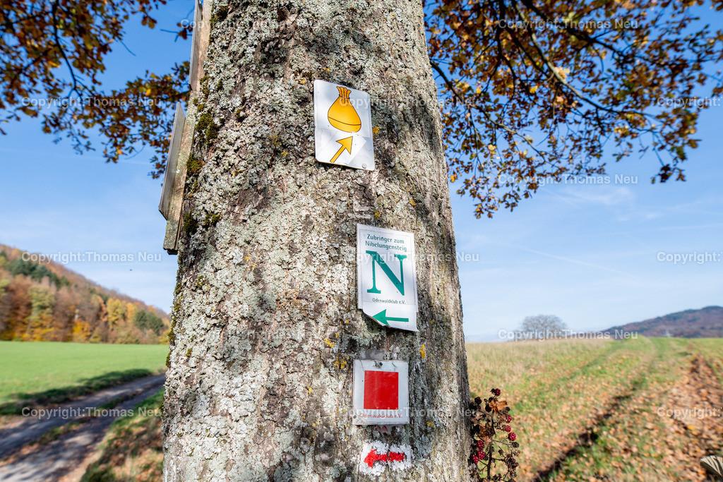 DSC_5144 | bre,bli,Adventsspaziergang , Schlierbacher Tal bis zum Kunstweg Lindenfels Fürth,, Bild: Thomas Neu