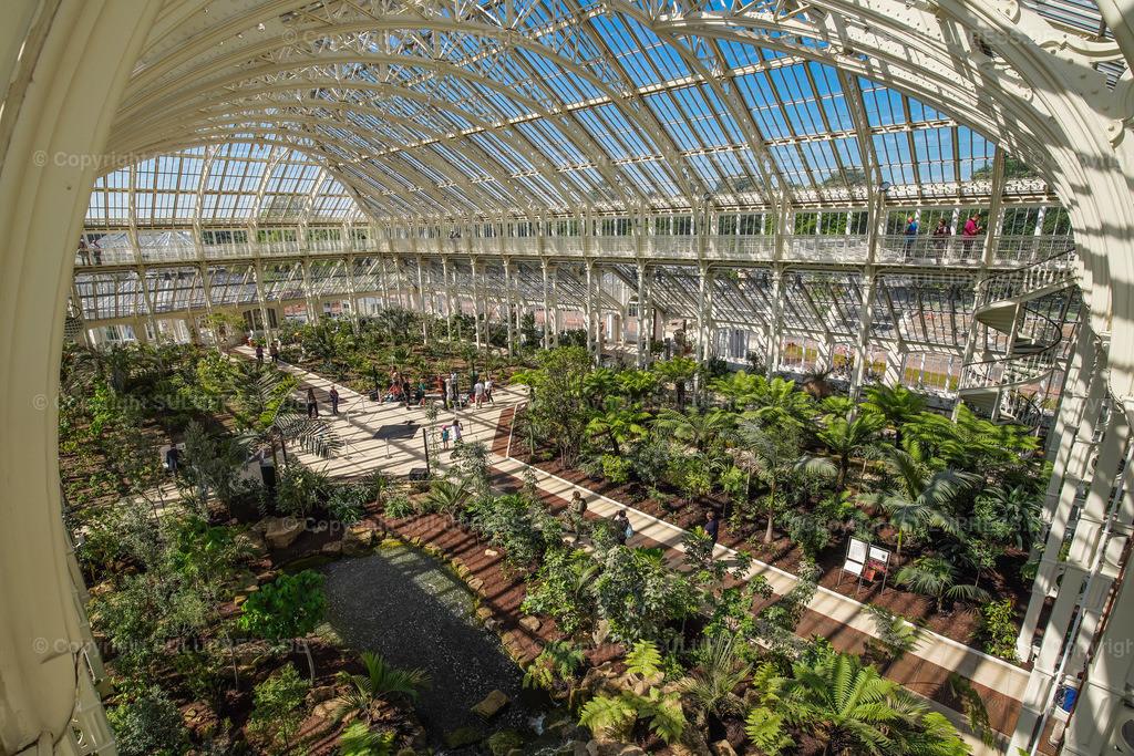 Temperate House - Royal Botanic Gardens Kew Gardens in London   15.05.2018, die Royal Botanic Gardens, Kew (Kew Gardens) sind eine ausgedehnte Parkanlage mit bedeutenden Gewächshäusern. Sie liegen zwischen Richmond upon Thames und Kew im Südwesten Londons und zählen zu den ältesten botanischen Gärten der Welt. Innenansicht mit Details der Stahlträgerkonstruktion vom Temperate House (Haus der gemäßigten Klimazonen), mit 4880 m² etwa doppelt so groß wie das Palm House und damit das größte der Gewächshäuser in Kew, entstanden nach Plänen des englischen Architekten Decimus Burton (1859–63), erbaut vom Eisengießer Richard Turner.
