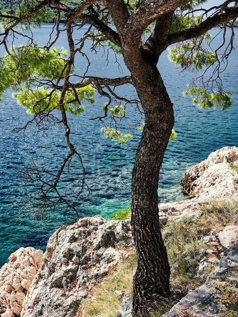 Kroatien_2019 4 1   OLYMPUS DIGITAL CAMERA