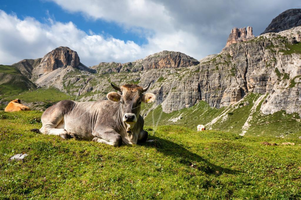 Dolomiten | Die Dolomiten, Unesco Welterbe und absolut beeindruckend
