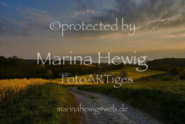 RapsLütjenburg_marina hewig