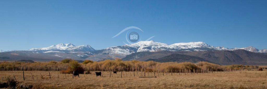 USA_Sierra Nevada_03