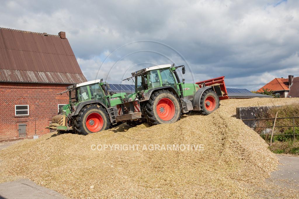 20080914-IMG_9130 | Silomais wird gehäckselt - AGRARFOTO Bilder aus der Landwirtschaft