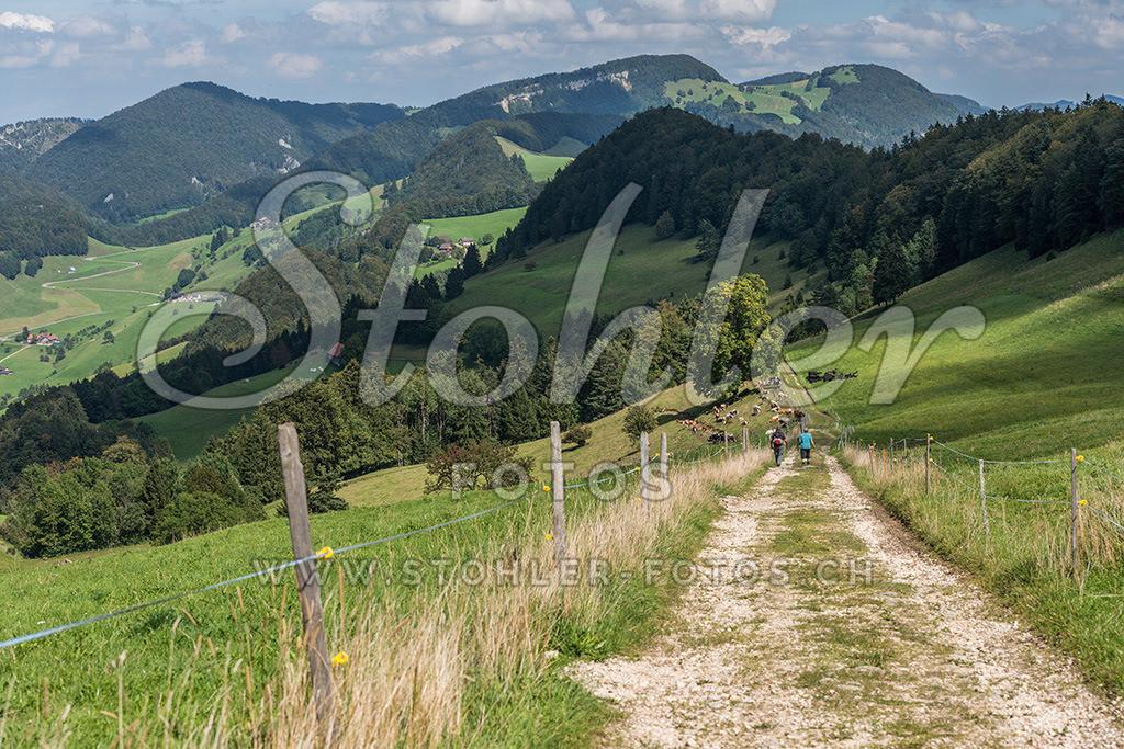 Blick auf den Passwang | Blick auf den Passwang (1204 m ü.M.), Beinwil im Kanton Solothurn.