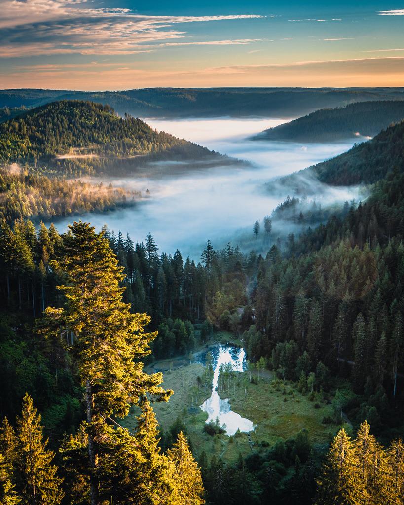Ellbachseeblick | Blick auf den Ellbachsee im Nationalpark Schwarzwald