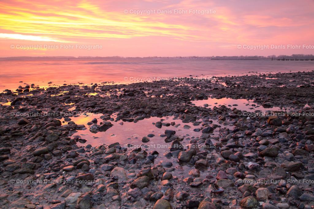 Gold Lila Sonnenaufgang | Die Küste im Sonnenaufgang, durch zurückgehendes Wasser bilden sich Pfützen in denen sich der Himmel spiegelt