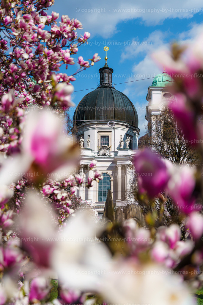 Salzburg im Frühling-1