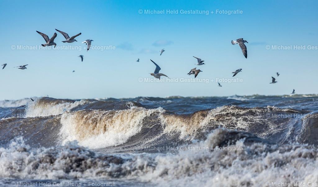 Ostsee bei Sturm | Ostsee bei Hohenfelde bei Windstärke 8