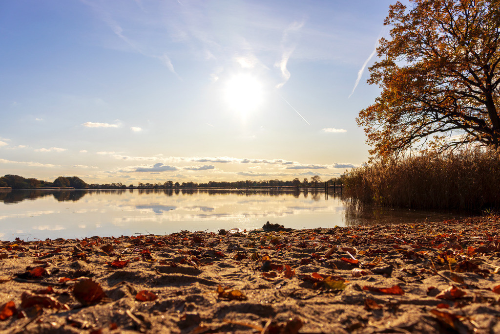 Lindaunis an der Schlei | Herbst in Lindaunis an der Schlei
