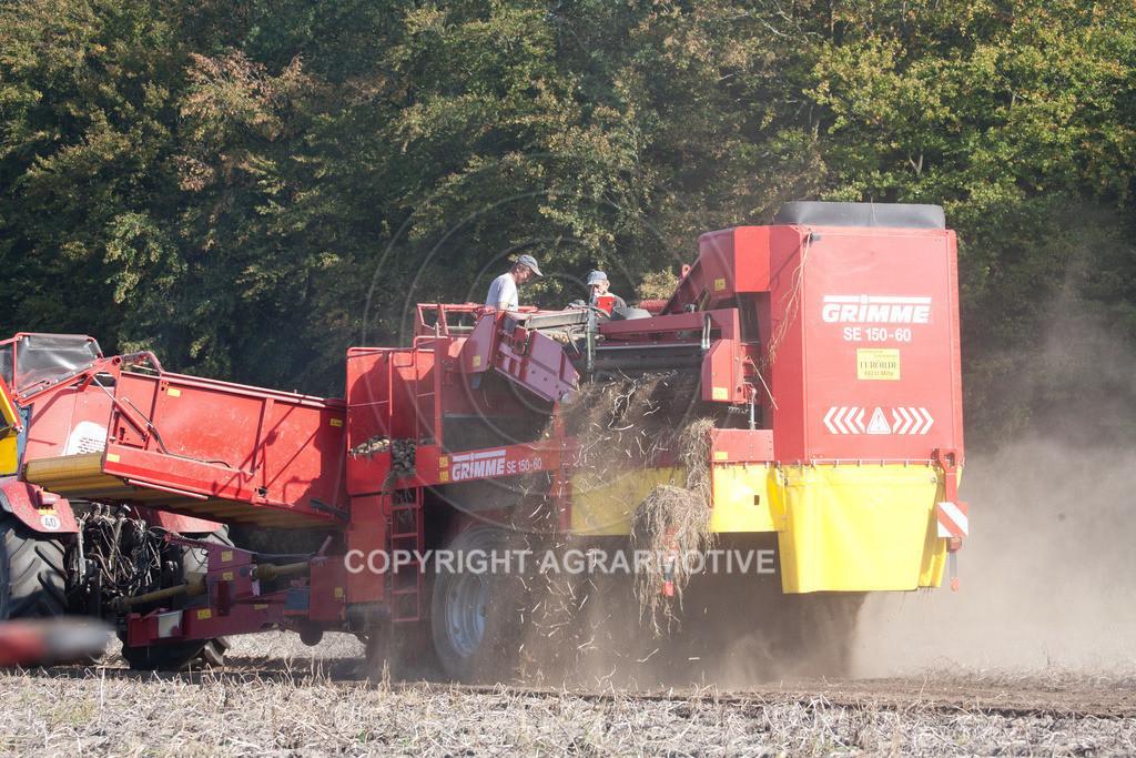 20110929-IMG_6089   Ernte auf einem Kartoffelfeld - AGRARBILDER
