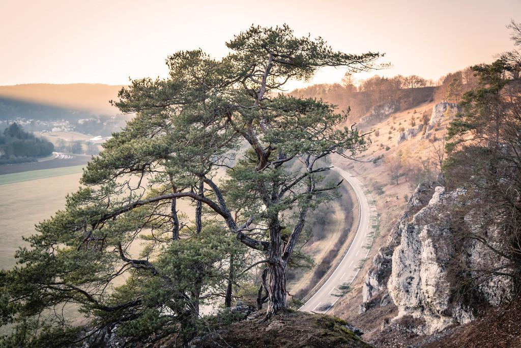 Zwölf Apostel, Altmühltal | Die Serie 'Deutschlands Landschaften' zeigt die schönsten und wildesten deutschen Landschaften.