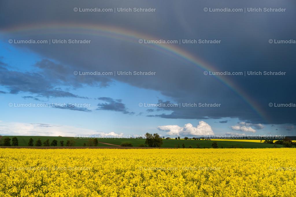 10049-12140 - Regenbogen