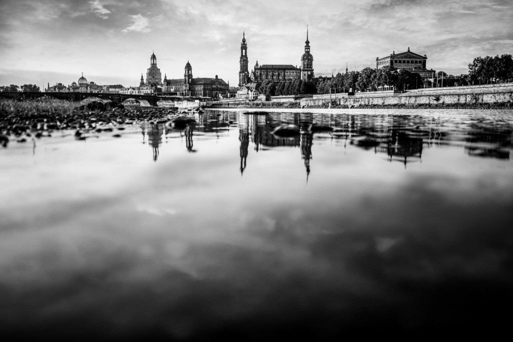 Dresden Tom Thiele (2)sw