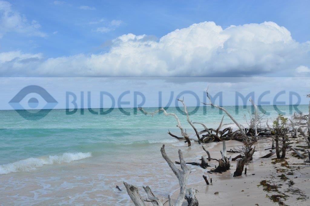 Bilder vom Meer aus der Karibik | Strandbilder in Kuba