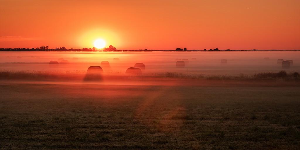 Sonnenaufgang in den Hammewiesen | Ein weiterer toller Sonnenaufgang in den Hammewiesen
