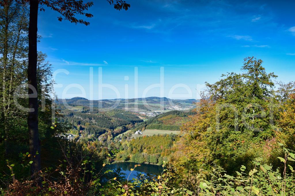 Landschaft Daun | Blick über das Gemündener Maar