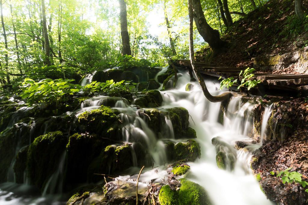 Wasserkaskaden im Wald in Plitvice