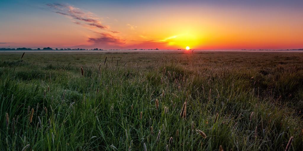 Sonnenaufgang in den Hammewiesen | Sonnenaufgang vom 16.05.2020. Aufgenommen in den Hammewiesen.