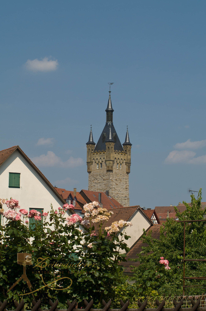 Bad Wimpfen Blauer Turm | OLYMPUS DIGITAL CAMERA